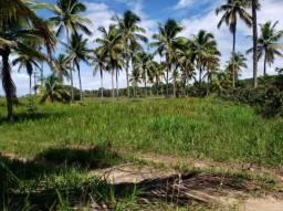 Fazenda para Venda em Maraú, Zona Rural
