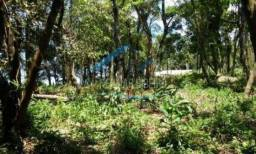 Terreno à venda em Rocil pequeno, São francisco do sul cod:29