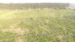 100 hectares