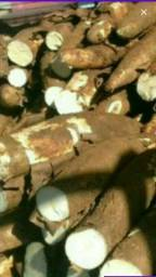 Produtos da Roça Aipim manteiga D primeira / Laranja Quiabo Limao