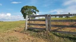 WL Credito Rural Arrendamento