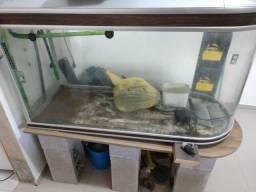 Aquário curvo raro 378 l ótimo estado de conservação