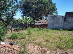 Terreno para alugar em Vila marieta, Campinas cod:TE025146
