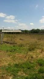 ÓTIMA OPORTUNIDADE!!! Fazenda no estado do Pará, a 80km de Marabá