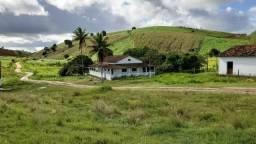 Excelente propriedade em Barra de Guabiraba, com 1.000 hectares