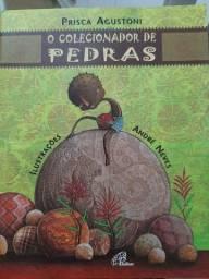 Livro o Colecionador de Pedras - Prisca Agustoni