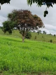 Fazenda à venda em Nova Ipixuna estado do Pará, proximo a Marabá-PA