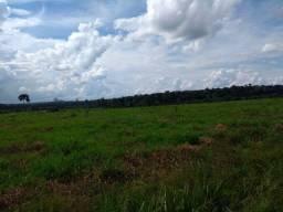 Vendo fazenda Rondônia, Nova Mamoré