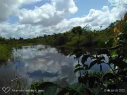 Fazenda no km 42, rumo Humaitá, com 100.00ha