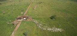 Fazenda-Granja-Sítio com 2.876,89 Hectares em Tocantins