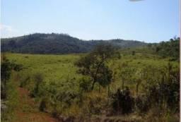 Fazenda - Sítio à venda, Pinheiros Altos - Piranga/MG