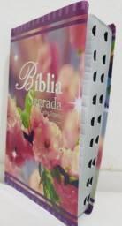 Bíblia letras gigante