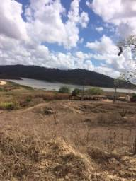 Fazenda-Granja-Sítio com 100 Hectares em Timbaúba