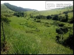 FAZENDA EXCELENTE - GADO CORTE/LEITE - GUARATINGUETÁ - SP