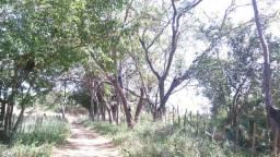 Fazenda em Santa Quitéria 9.254 hectares toda escriturada