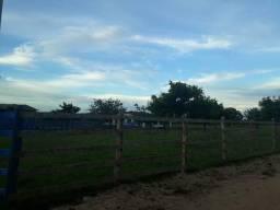 Fazenda com 50 hectares  estruturada na região de Monte Alegre