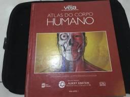 Atlas do Corpo Humano - Guia De Medicina e Saúde
