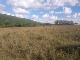 Fazenda Unai, 147 hectares, 99 hectares e 48 hectares