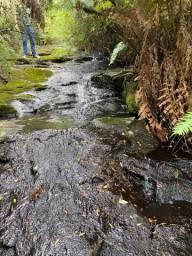 Título do anúncio: Terreno de 60 hectares em Urubici