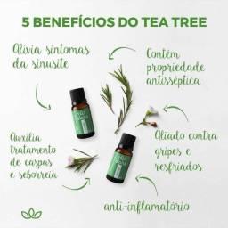 Oleo essencial Tea Tree (melaleuca)