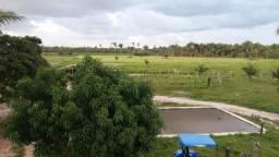 Fazenda montada em Itapecuru-Ma, 200 hectares,margeada pelo Rio Itapecuru!