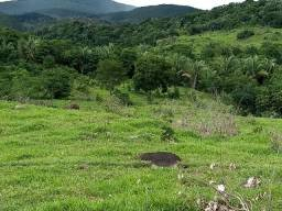 Fazenda 380 Hectares Terra Excelente - 95 km da Capital - MT
