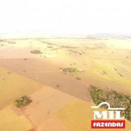 Título do anúncio: Fazenda 40 alqueires em Indiara - GO