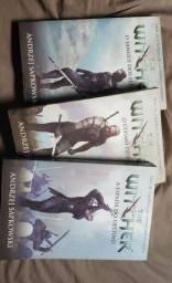 Título do anúncio: 3 livros the witcher