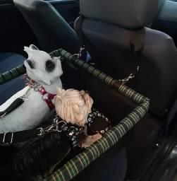 Cadeirinha dupla Pet