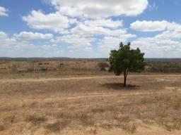 Fazenda com 150 hectares em cachueira do sapo na br 304