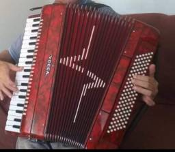 acordeon vogga