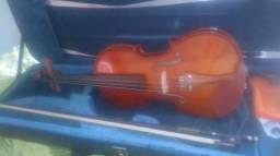 Violino, novo!