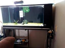 Aquario jumbo 300lts