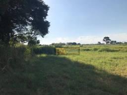 Terreno à venda, 250 m² por R$ 49.000,00 - Loteamento Irio Holler - Foz do Iguaçu/PR