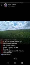 Fazenda (sítio ) 37 alq mais da metade roxo