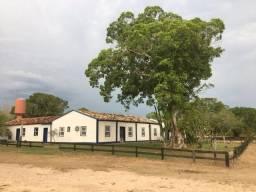 Fazenda 9.715 hectares no pantanal de Poconé MT