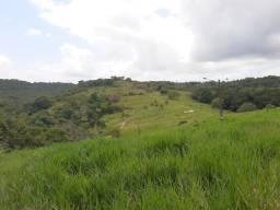 Troco Fazenda com 11,6 Hectares em Igarassu-PE