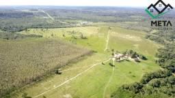 Fazenda Vilhena - Pimenta Bueno