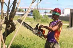 Serviço de jardinagem, roçadeira e poda de árvore