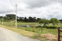 Terreno à venda, 3000 m² por R$ 540.000,00 - Chácara Águas Claras - Piraquara/PR