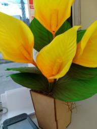 Vasos de flor eva