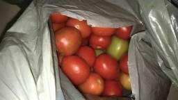 Pepinos e tomate