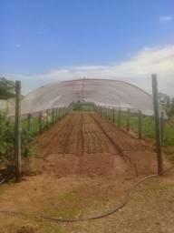 Estufas agrícolas( vendo ou troco)