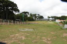Terreno à venda, 1500 m² por R$ 300.000,00 - Chácara Águas Claras - Piraquara/PR
