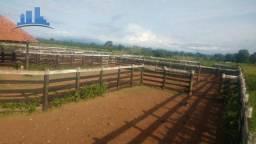 Fazenda de 2.600 hec em Caceres-MT, suporta 1.500 garrotes
