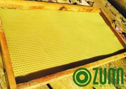 Cera de abelha Alveolada