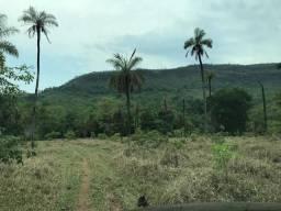 Fazenda Barata! 135 km Goiânia. Por 25 Mil o Alq.