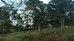 Fazendinhas em Matozinhos - Financiadas - MVT