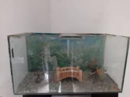 Aquario Com Acessoris Capacidade 80  Litros Dgua