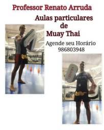 Aulas particulares de Muaythai - Professor Renato Arruda equipe César Nunes team!